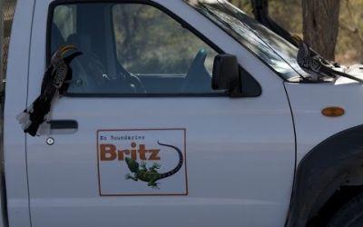 Britz Rentals – 4WD MDE Nissan Double Cab 4 Bett