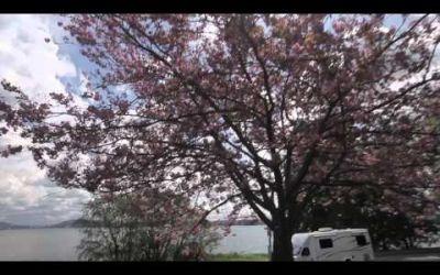 Canadream – SV-C Motorhome
